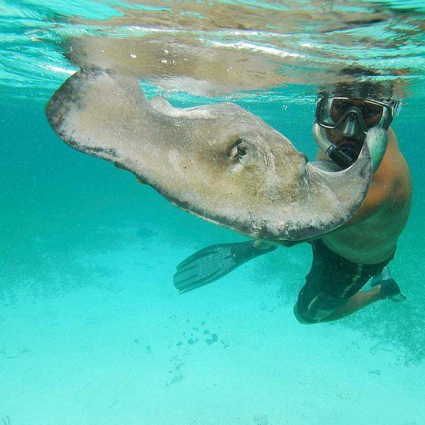 snorkel en Comino